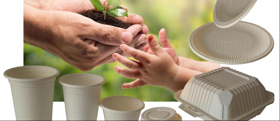 productos desechables biodegradables